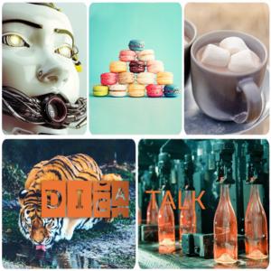 DICA-Talk, zu sehen ist ein Tiger, Flaschen die aufgefüllt werde, Kakao mit Marshmallows